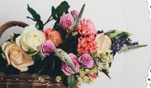Доставка цветов в барнауле круглосуточно заказ цветов с доставкой в стерлитамаке черноморская